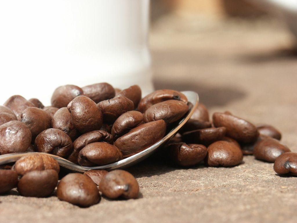 Kaffeeschule